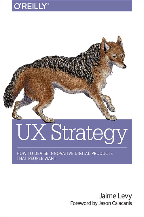 UX strategy book