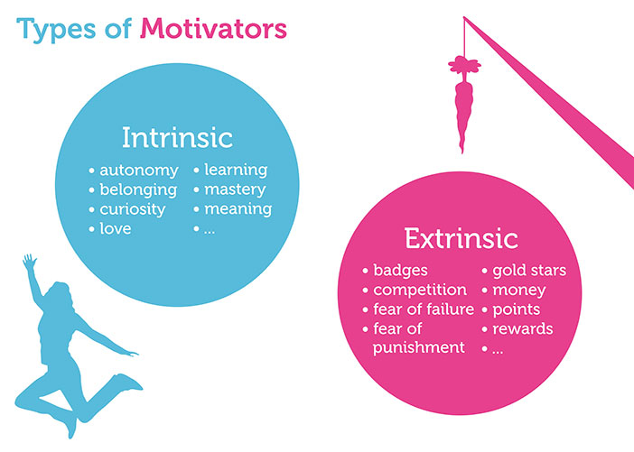 motivation types infographics
