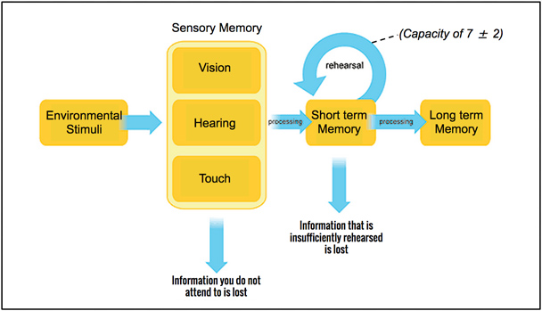how memory works for designers