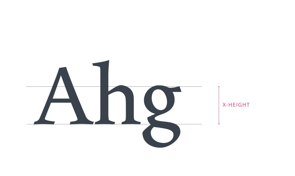 tubik typography x height