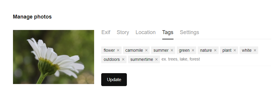 example of tag in the interface