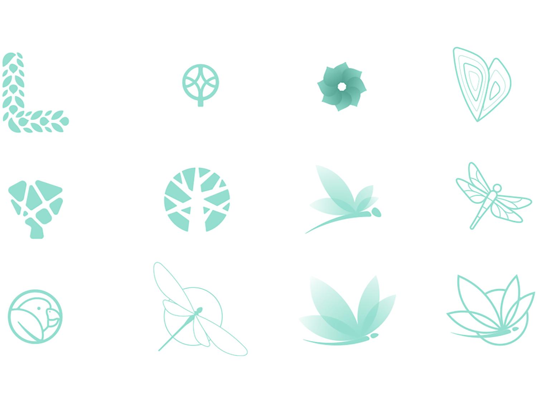lunnscape logo options creative_search