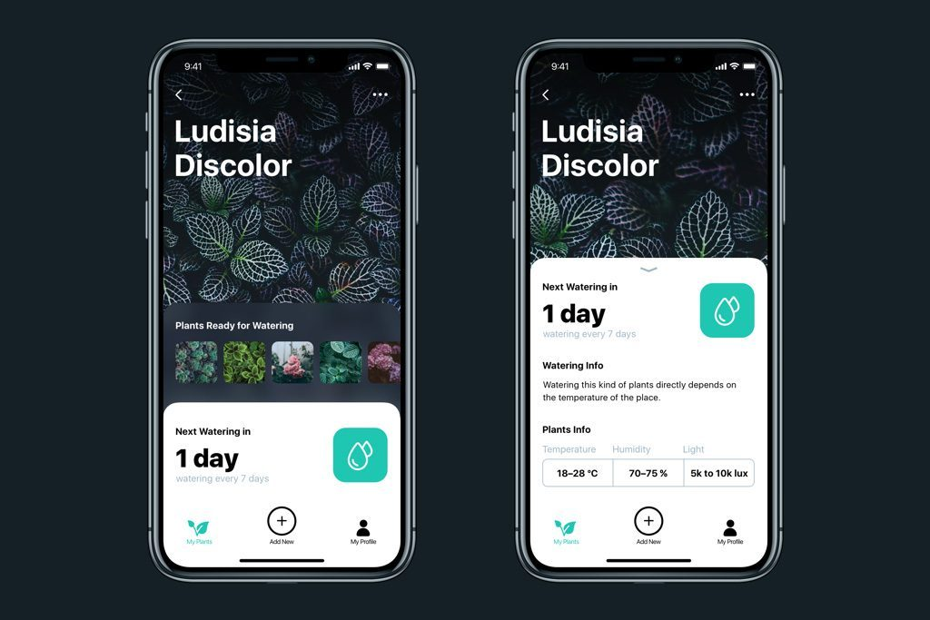 watering tracker UI design