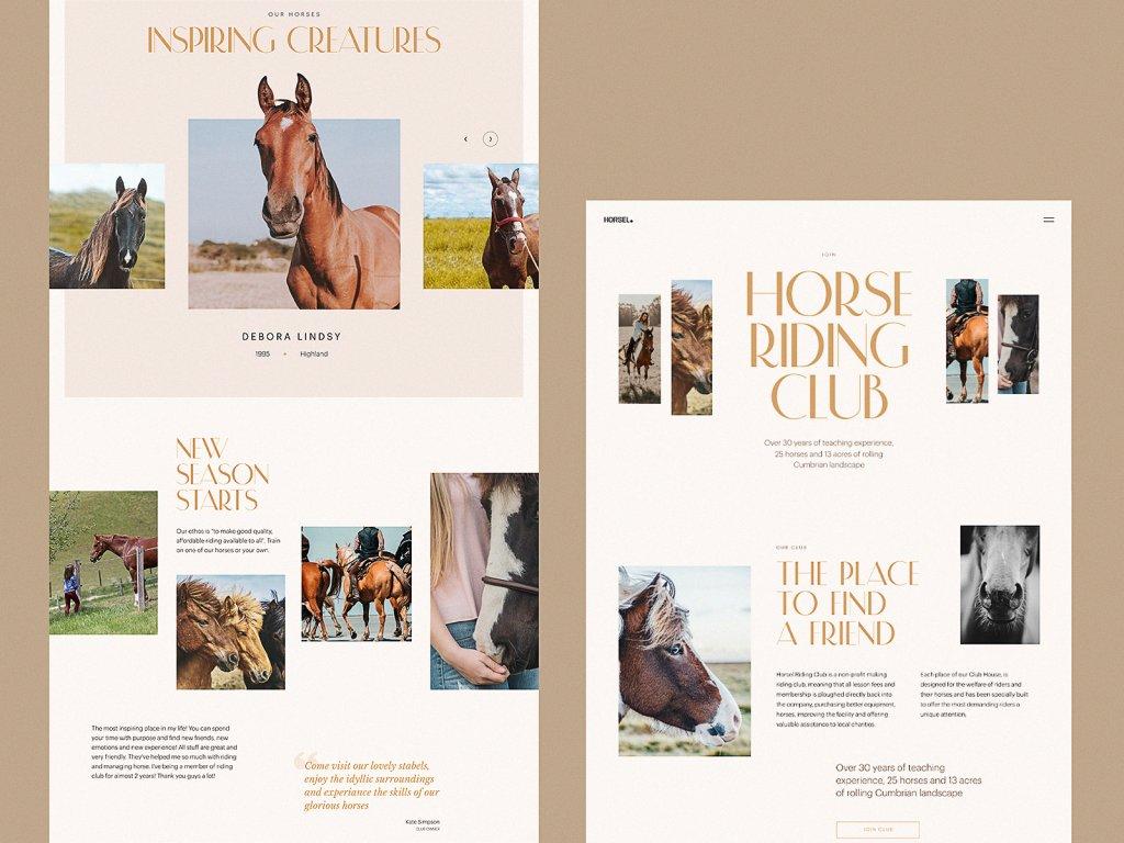 horse riding club website tubik