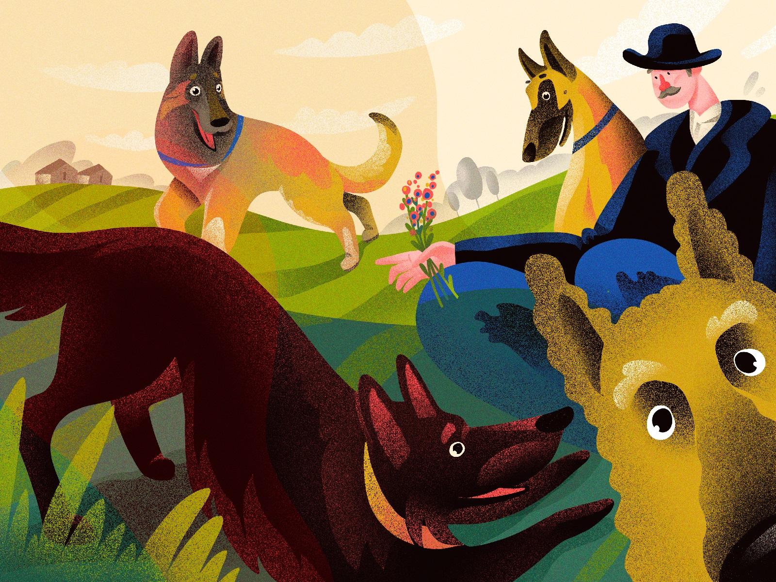 dogs belgian shepherd illustration