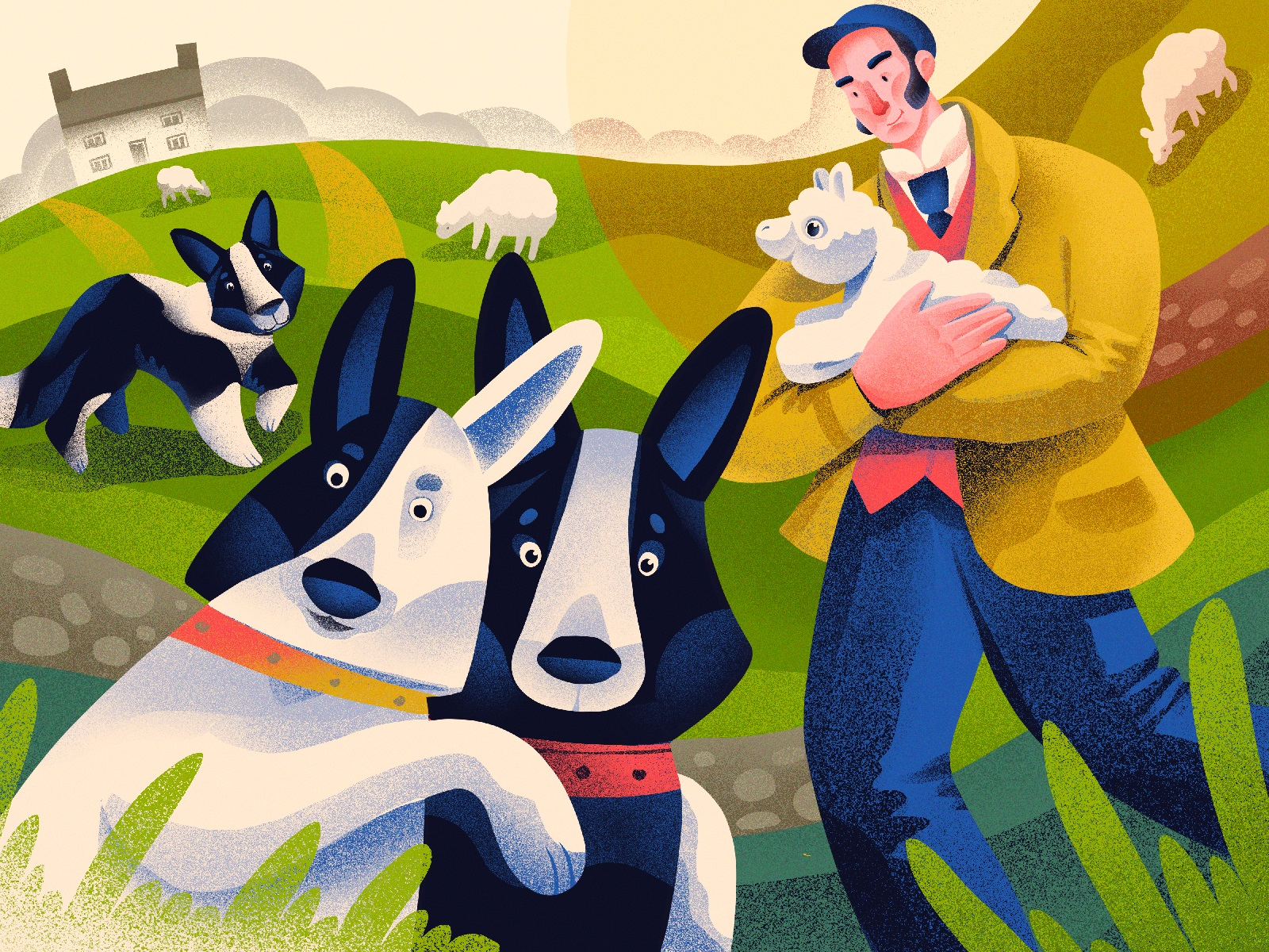 dogs border collie illustrations