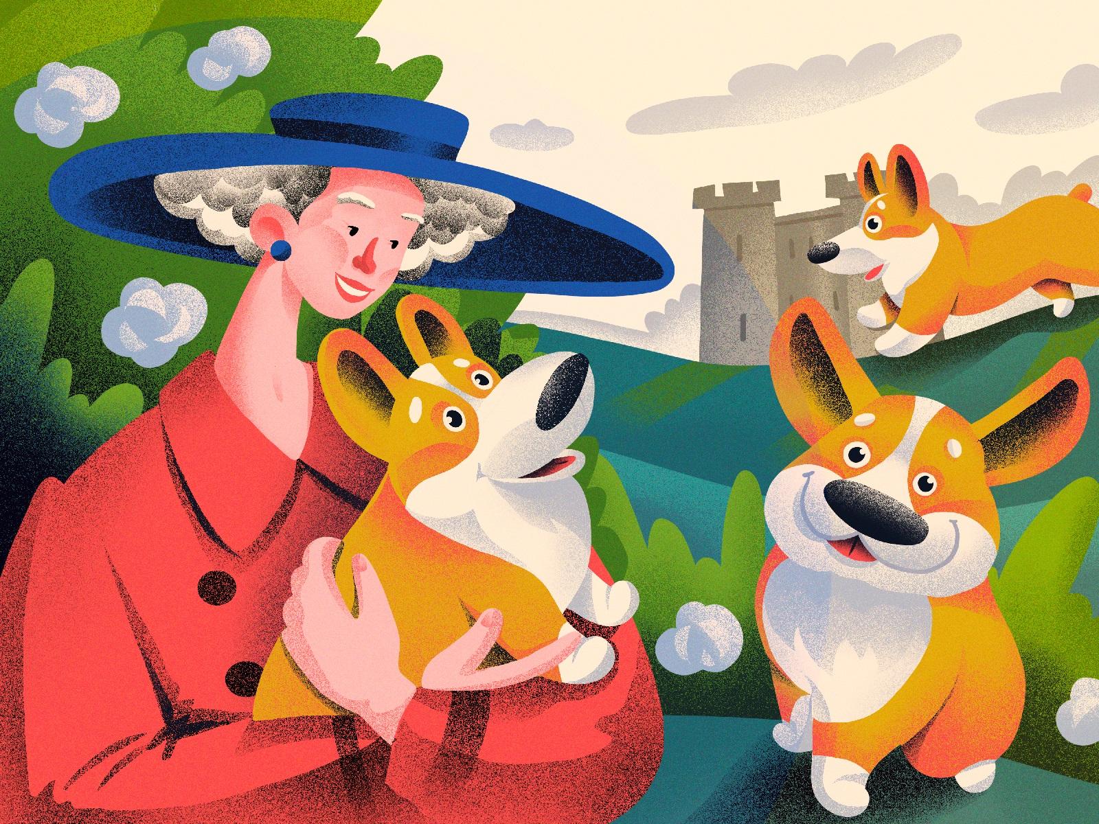 dogs welsh corgi illustration