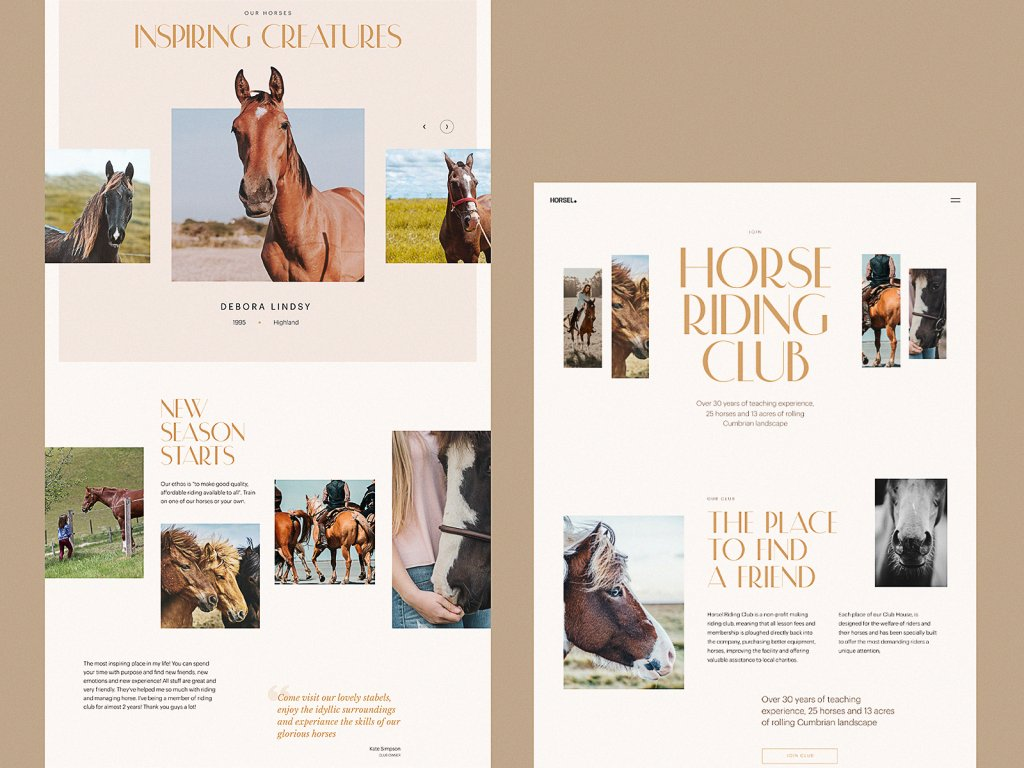 horse riding club web design