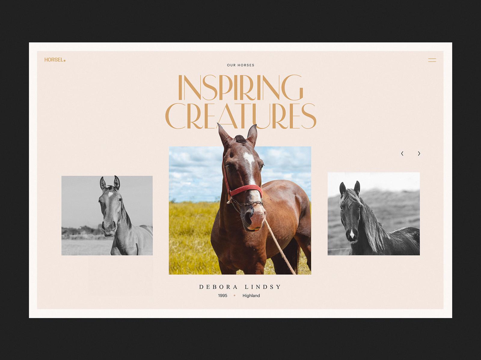 horse riding website design tubik studio