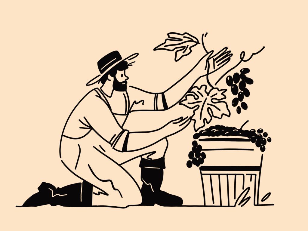 winemaker illustration art
