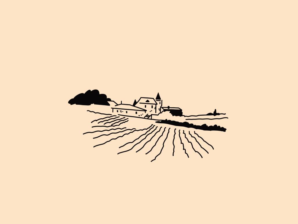 winery field illustrations